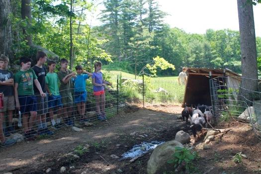 Farm tour!